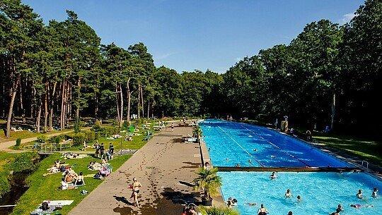 Das neue Schwimmbecken im Waldbad Dünnwald