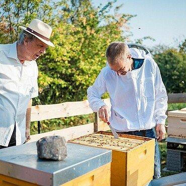 Jens Bössen und Imker Matthias Roth überprüfen den Zustand im Bienenstock im Waldbadviertel