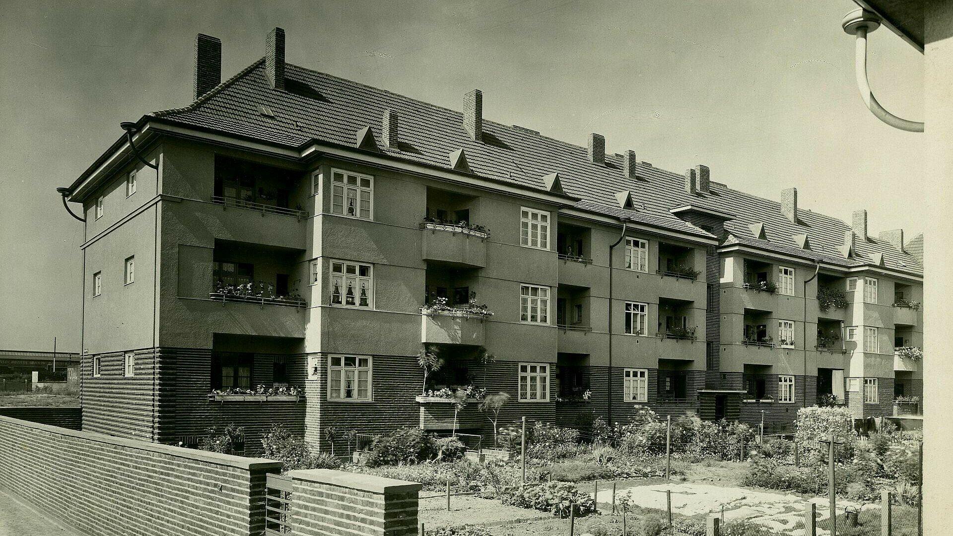 Historisches Foto von Gartenparzellen in der Germaniasiedlung in Höhenberg