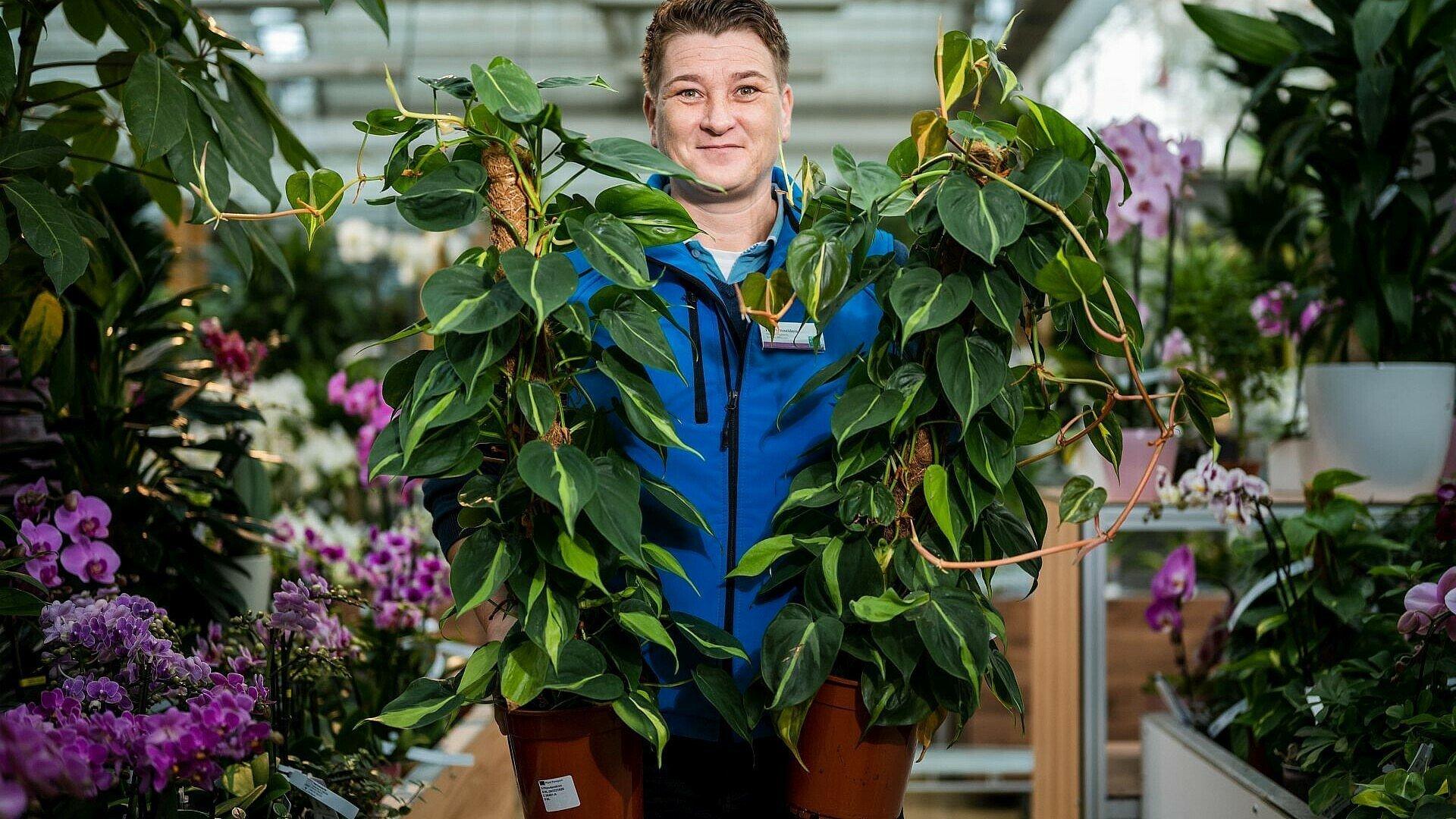 """Gärtnermeisterin und Chef-Einkäuferin mit pflegeleichten Pflanzen im """"Dinger's Gartencenter"""""""