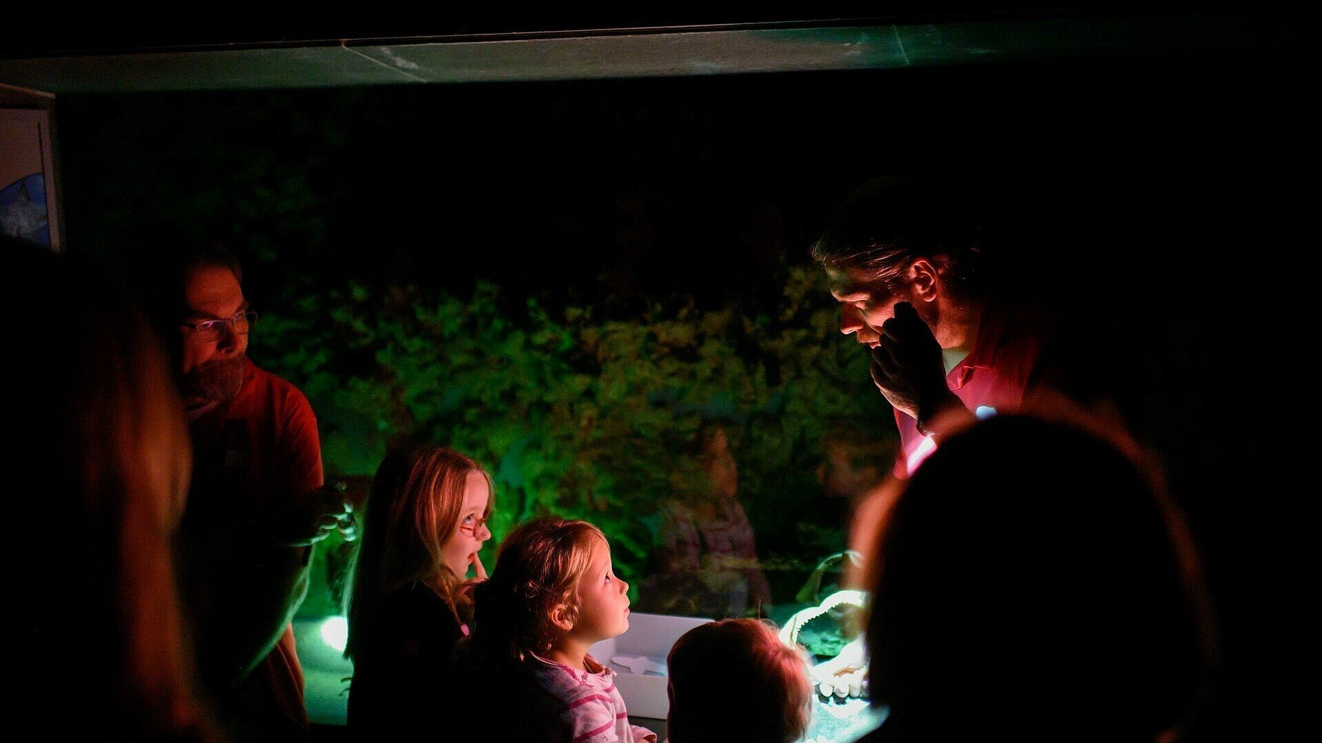 Kinder sehen Haigebiss bei der Taschenlampenführung im Kölner Zoo