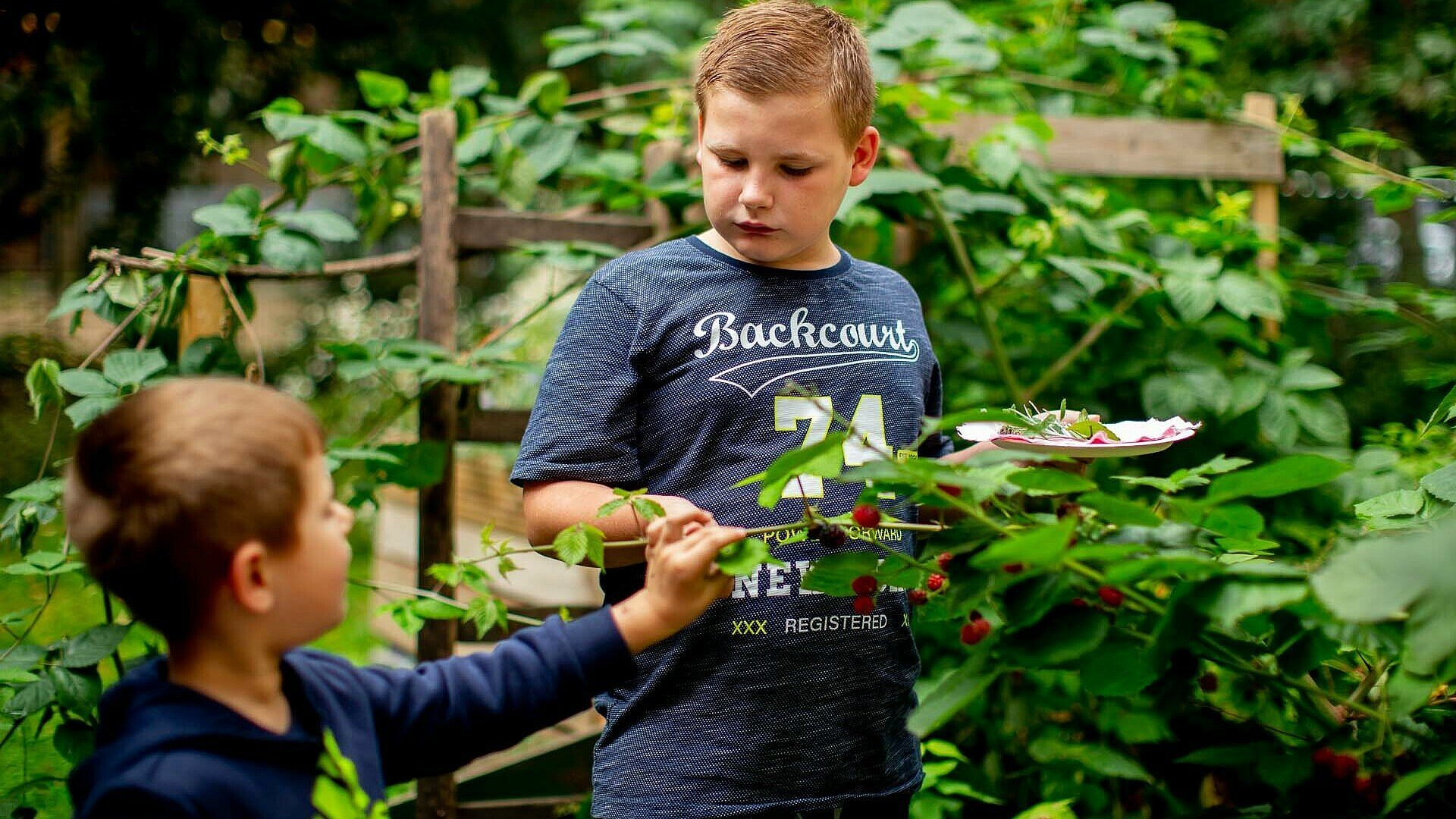 Zwei Kinder auf der Suche nach Kräutern im GartenClub Bilderstöckchen