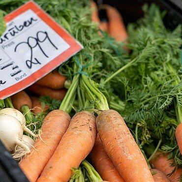 """Kiste mit Karotten beim """"Kölner Biobauern"""" in Humboldt/Gremberg"""